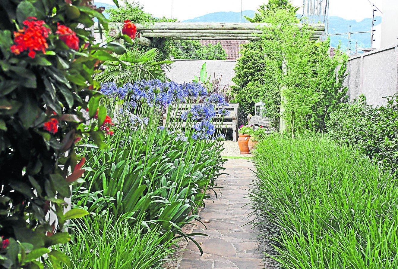 fotos de jardim florido : fotos de jardim florido:jardim florido nas quatro estações do ano – Casa tem jardim florido