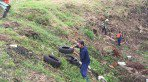 Grupo se re�ne para combater o aedes aegypti removendo lixo na BR-116