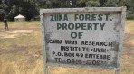 Floresta onde foi descoberto o zika v�rus fica em Uganda, na �frica