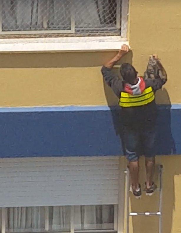 Eliseu Oliveira do Santos, 24 anos, subiu em uma escada para pegar o animal que estava preso do lado de fora do 3º andar de um apartamento