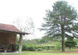 Casa Gilioli