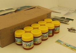 Ivoti é conhecida por ser a cidade das flores, mas também se destaca pelo mel