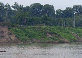 O desafio de viver em uma reserva para conservar a Amazônia