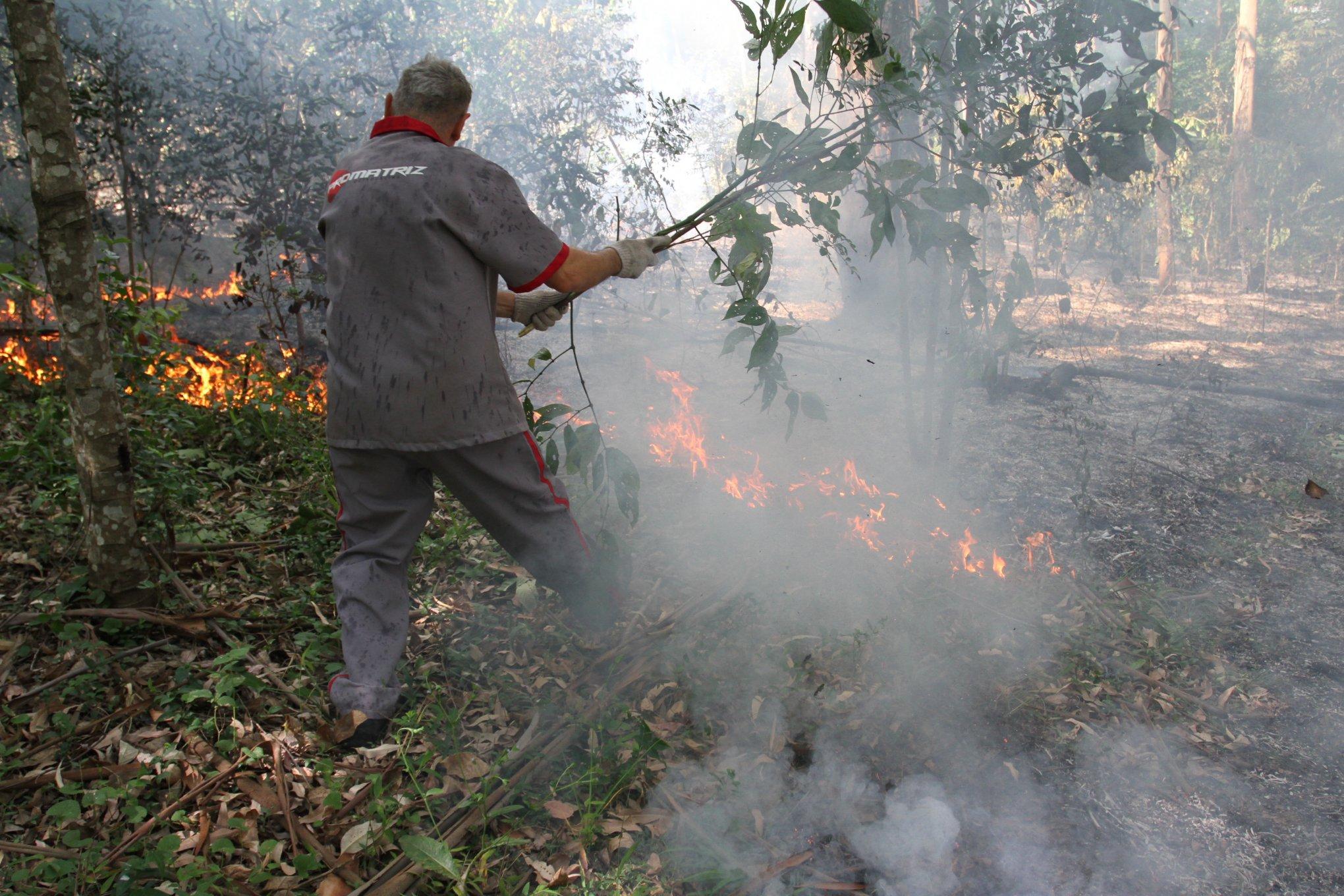 4e91136e2e8f2 Foco de incêndio  perto da Fundação Liberato começou segunda e foi  controlado ontem. Foto  Juarez Machado GES