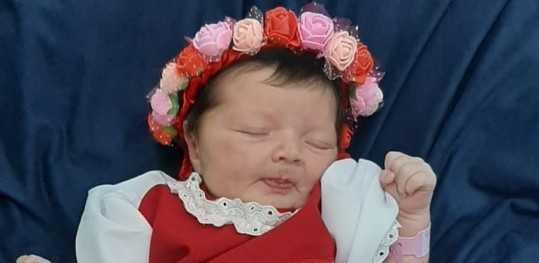 Ensaio com bebês em maternidade faz homenagem à Oktoberfest em Igrejinha; veja fotos
